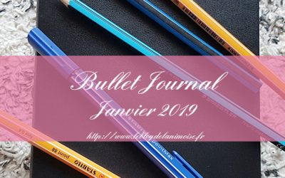 BULLET JOURNAL : PLAN WITH ME JANVIER 2019