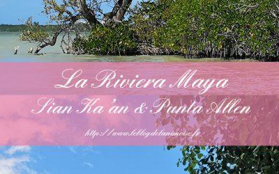 MEXICO : Sian Ka'an et Punta Allen