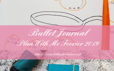 BULLET JOURNAL : Plan With Me Février 2019