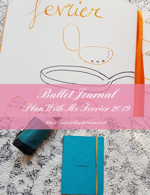 BULLET JOURNAL : Plan With Me Février 2019