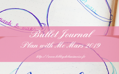 PLAN WITH ME : Mars 2019