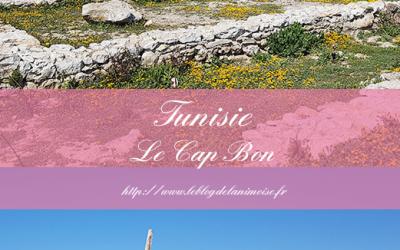 TUNISIE : Le Cap Bon