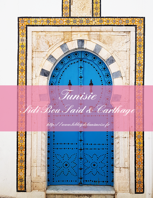 TUNISIE : Sidi Bou Saïd et Carthage