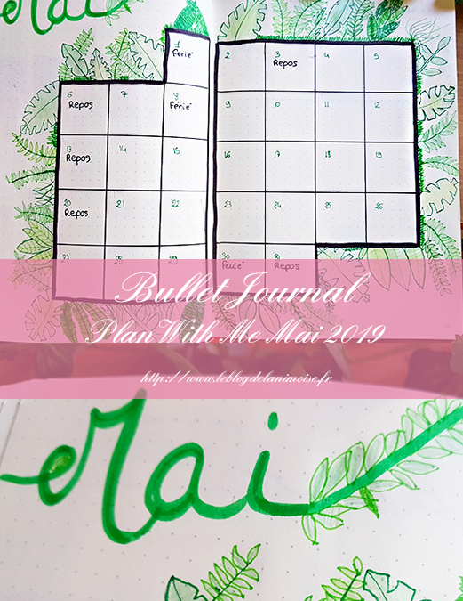 BULLET JOURNAL : Plan With Me Mai 2019