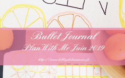 Bullet Journal : Plan With Me Juin 2019