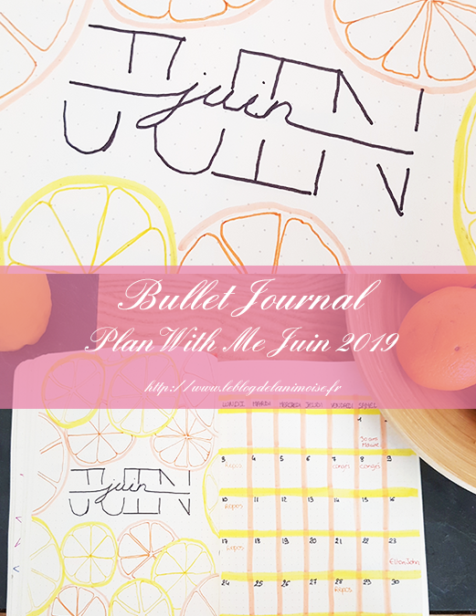 Bullet Journal : Plan With Me Juin 2019