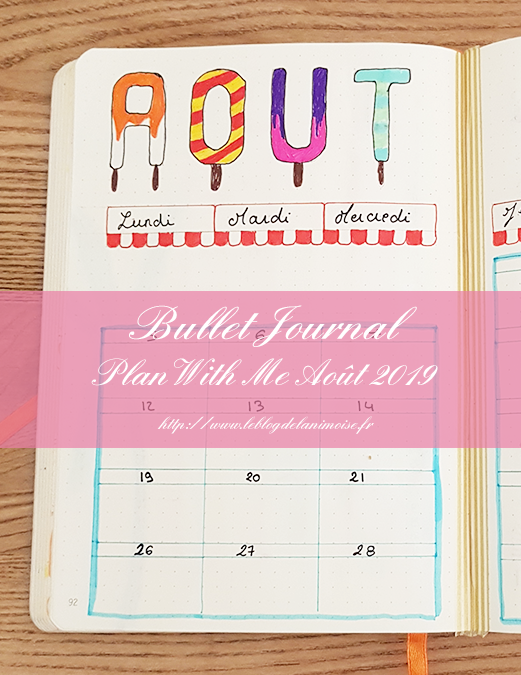 BULLET JOURNAL : Plan With Me Août