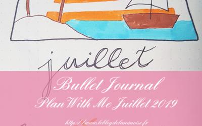BULLET JOURNAL : Plan With Me Juillet