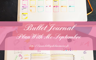 BULLET JOURNAL : Plan With Me Septembre 2019