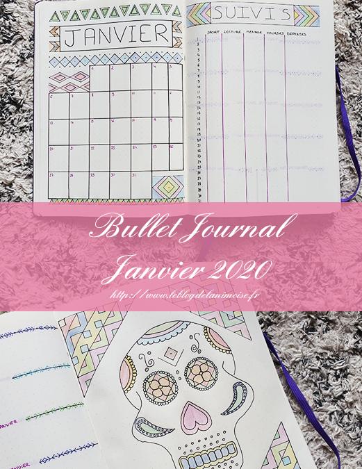 Bullet Journal : Janvier 2020